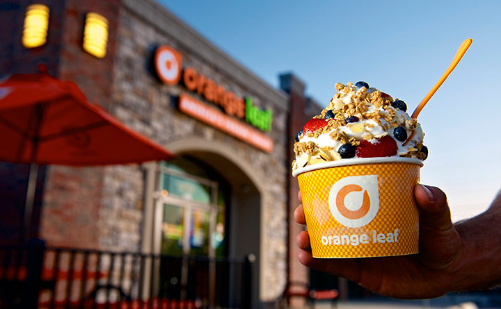 orange leaf outside cup